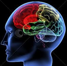 Neurosciences, physique quantique, de nouvelles pistes thérapeutiques. Geneviève Schmit