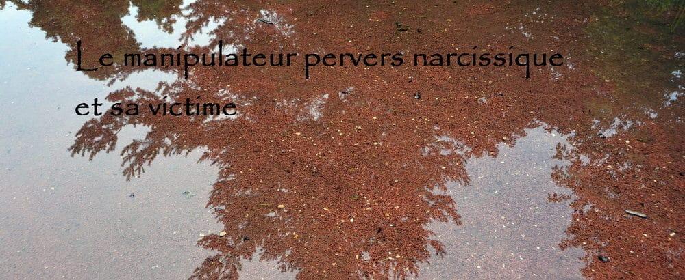 Pervers narcissique et victime