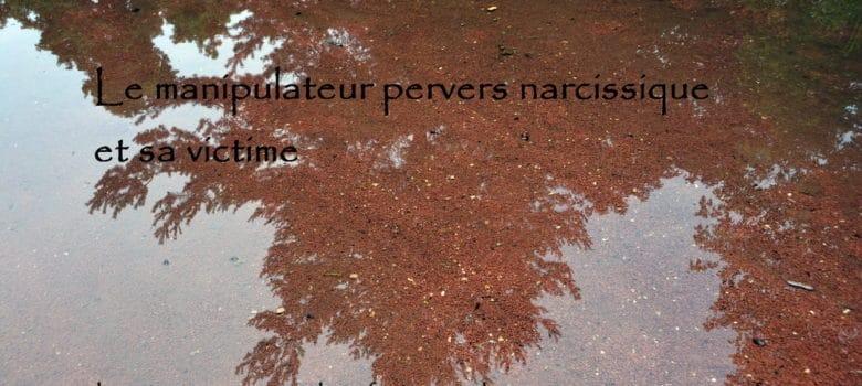 Le pervers narcissique et sa victime - Geneviève SCHMIT