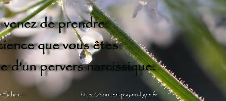 Vous venez de prendre conscience que vous êtes victime d'un pervers narcissique.. Geneviève Schmit