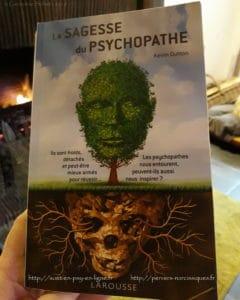 La sagesse du psychopathe - Kevin BUTTON